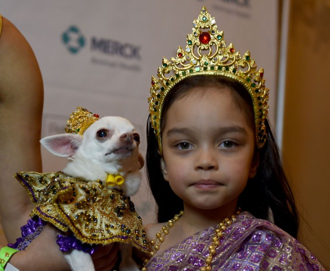 Coraline Diaz, representing Thailand and a contestant in the World Fashion Presents segment, is seen during the 14th Annual New York Pet Fashion Show presented by TropiClean at the Hotel Pennsylvania February 9, 2017. (TIMOTHY A. CLARY/AFP/Getty Images)