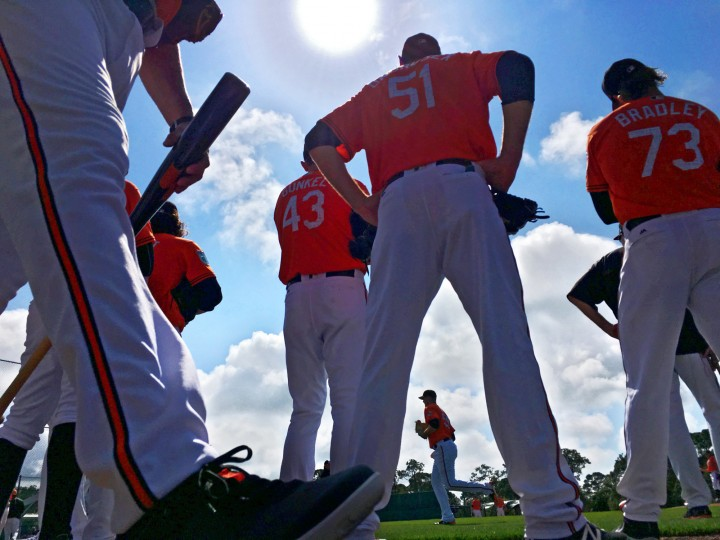 The midday sun pours light over the Baltimore Orioles squad who gather in a flurry of activity at field number one to participate in fielding drills during spring training at the Ed Smith Stadium baseball complex. (Karl Merton Ferron / Baltimore Sun)