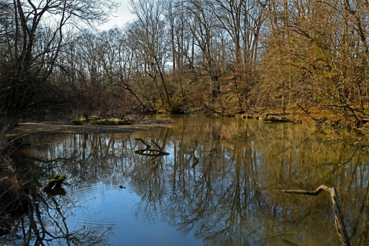 The idyllic tributary at the headwaters of the  Choptank River, near Red Bridges Road, was a popular area for fugitive slaves to cross the Choptank River as they fled to Sandtown, Delaware. The state line is about three miles east of the stream.  (Amy Davis/Baltimore Sun)
