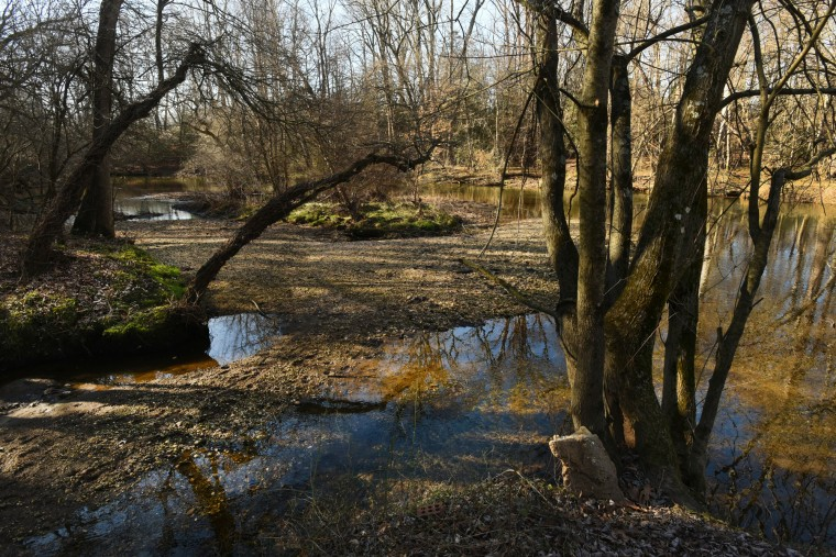 This shallow tributary in Christian Park near Red Bridges Road was a popular area for fugitive slaves to cross the upper Choptank River via Underground Railroad routes to Delaware. Slaves using water routes were more likely to avoid recapture. (Amy Davis/Baltimore Sun)