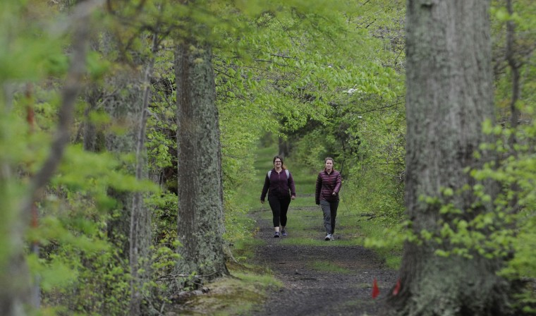 Melanie Brisse (l) of Adams Morgan, and Julia Friederich of Langley Park, hike along the Railroad Bed Trail in the Jug Bay Wetlands Sanctuary. (Kim Hairston/Baltimore Sun)