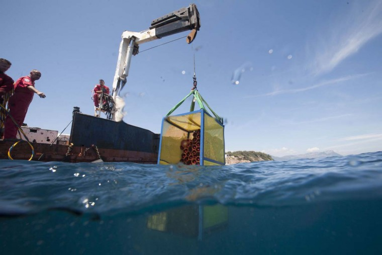 A crane takes a wine cellar out of the Mediterranean Sea off Saint-Mandrier, southern France on May 15, 2017. Bandol wine matured underseas during one year before being analyzed. (BORIS HORVAT/AFP/Getty Images)