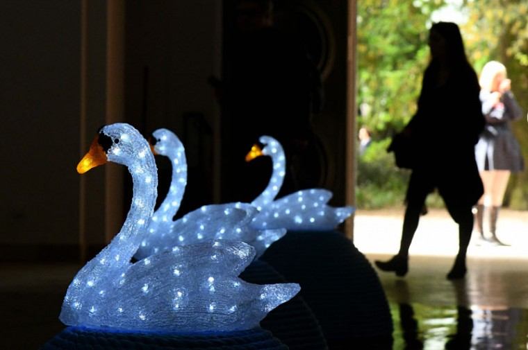 """Swan Song: Now"" by Czech artist Jana Zelinska. (VINCENZO PINTO/AFP/Getty Images)"