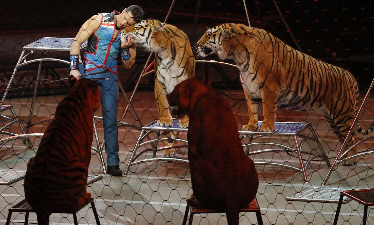 Ringling Bros. 'Greatest Show on Earth' takes its final bow