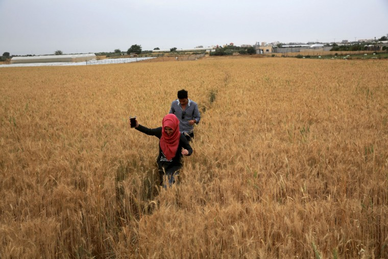 A couple enjoy a walk through a field of wheat during the labor day holiday in Khuzaa, east of Khan Younis, Gaza Strip, Monday, May 1, 2017. (AP Photo/Adel Hana)
