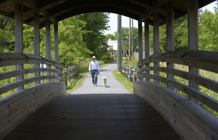 "David Breimhurst walks with his dog, ""Tookie,"" an Australian Labradoodle, on to the Bill Shook Memorial Bridge on the St. Michaels Nature Trail.  (Algerina Perna/Baltimore Sun)"