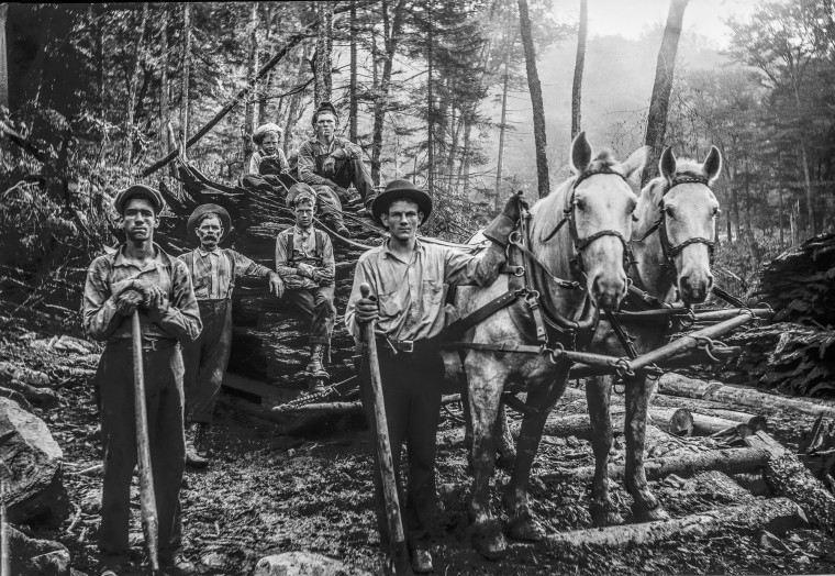 Men, boys and horses at work in the Cranberry Wilderness near Richwood, W. Va.