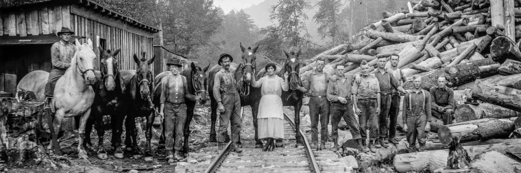 Men who worked in the wilderness around Richwood harvested mountains of logs from central West Virginia.