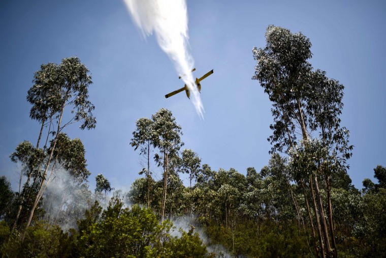A firefighter plane drops water on a wildfire at Cernache de Bonjardim in Serta on June 20, 2017.The huge forest fire that erupted on June 17, 2017 in central Portugal killed at least 64 people and injured 135 more, with many trapped in their cars by the flames. / (AFP Photo/Patricia Melo moreirapatricia de melo moreira)