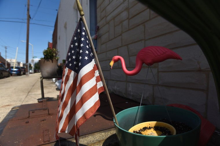An American flag and a pink flamingo share a flower pot outside a home on Hull Street. (Kim Hairston/Baltimore Sun)