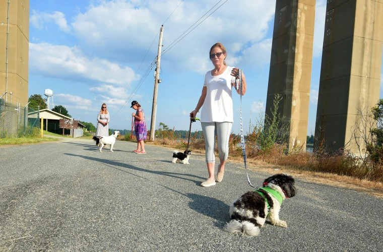 Shortly after sunrise, Carey Maloumian, foreground takes her two small dogs for a walk alongside the C&D Canal at the Chesapeake City Bridge. In the background are fellow residents Suzanne Ludwig, left, and Cat Morrison, right.  (Algerina Perna/Baltimore Sun)