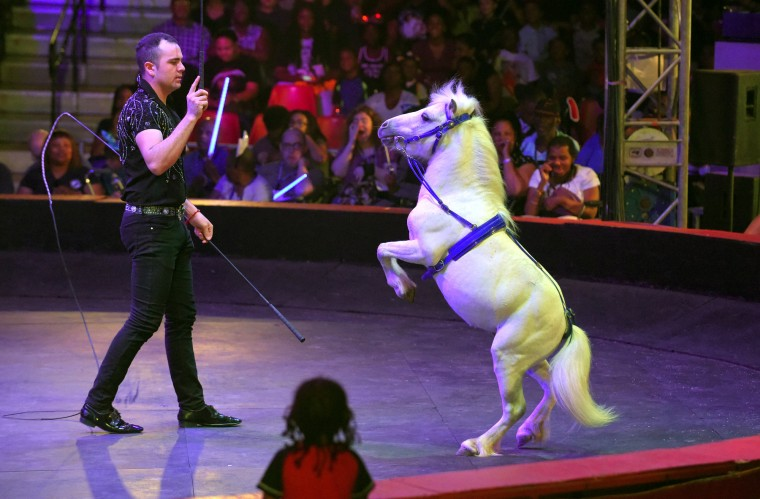 Yosaffat Garner Morales, trainer for the mixed animal act,  works with a pony under the big top.  (Lloyd Fox/Baltimore Sun)
