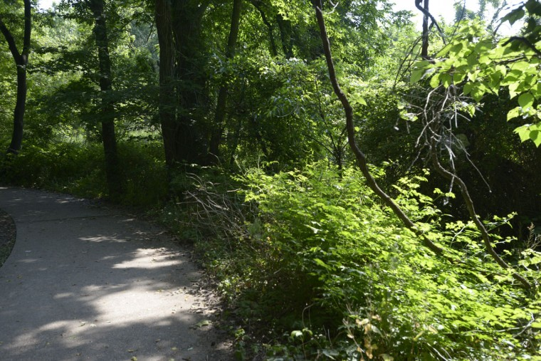 In addition to the beach, North Point State Park includes trails and fields and is excellent for a bike ride or a long walk. (Christina Tkacik/Baltimore Sun)