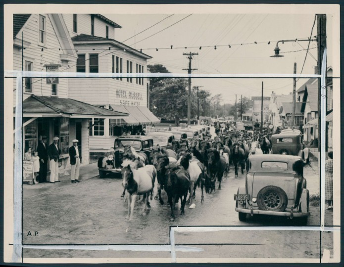 August 1, 1936 - Chincoteague Island. Photo by Baltimore Sun Staff Photographer.