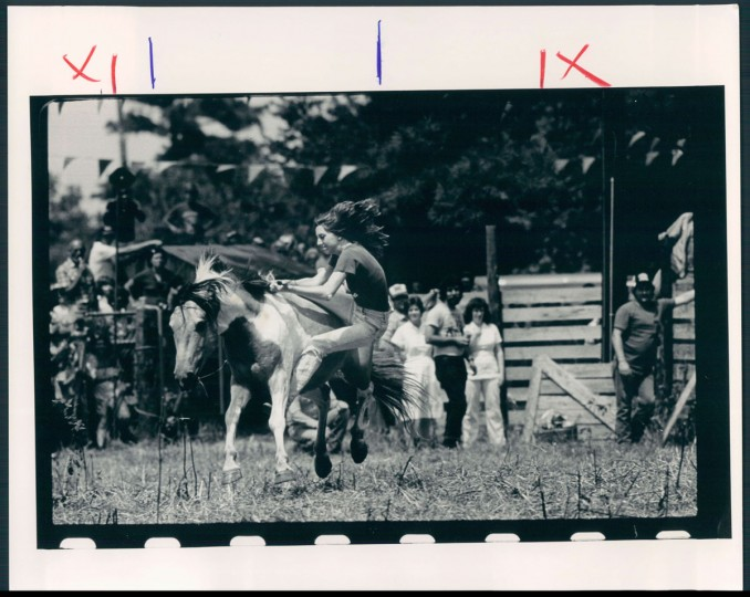 Chincoteague Island Pony Roundup, photo dated July 29, 1983. (Baltimore Sun archives)