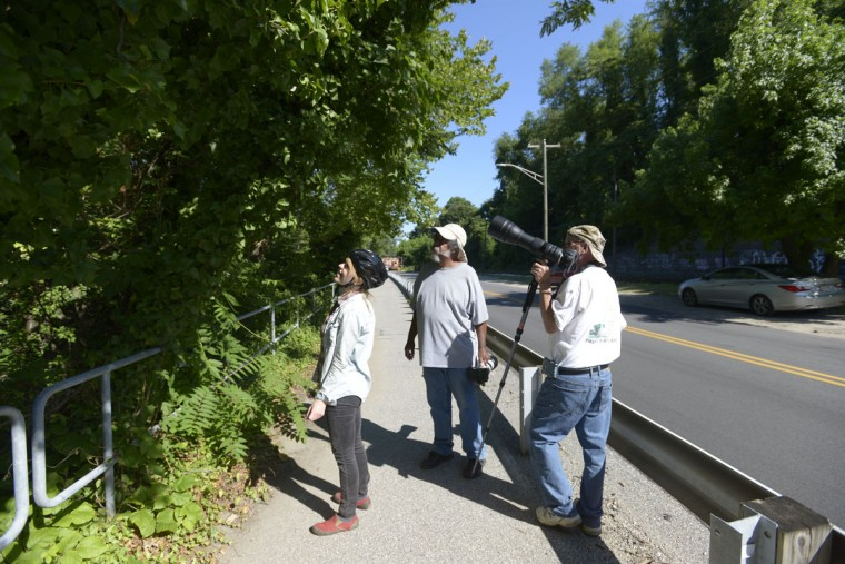 A spontaneous community of bird watchers springs up along the falls after Autumn, left, dismounts her bike to join Williams, center, and Andrew Clemens, far right, while they monitor the yellow-crowned night herons that have nested in sycamore trees along the Jones Falls Trail. (Christina Tkacik/Baltimore Sun)