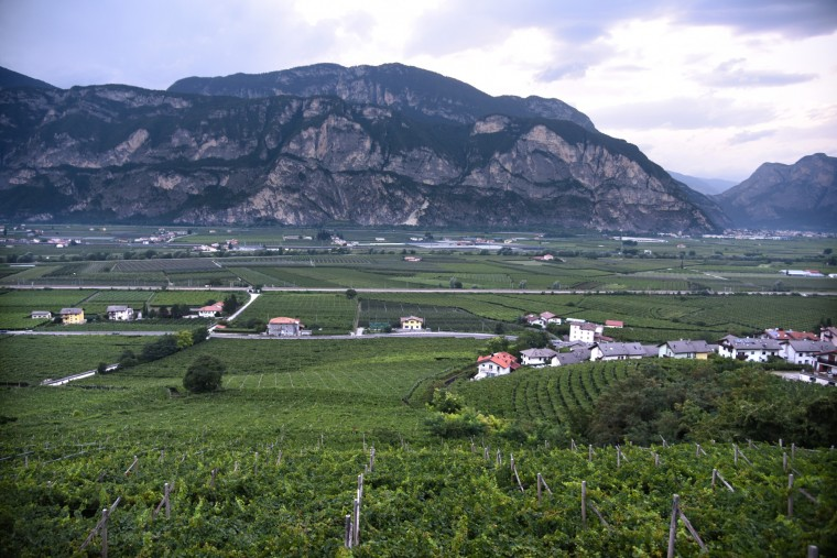 Lavis, Italy -- Vineyards fill the valley in Lavis  between Trento and Bolzano in a region with a German, Austrian and Hungarian history. The view is from Vecchio Sorni, a restaurant serving local cuisine. (Algerina Perna/Baltimore Sun)