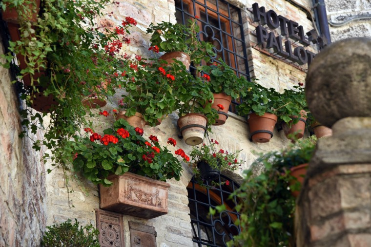 Assisi,Italy -- Like many homes throughout Italy, the stone wall of Hotel Pallota on Via S. Rufino is decorated with potted flowers. (Algerina Perna/Baltimore Sun)