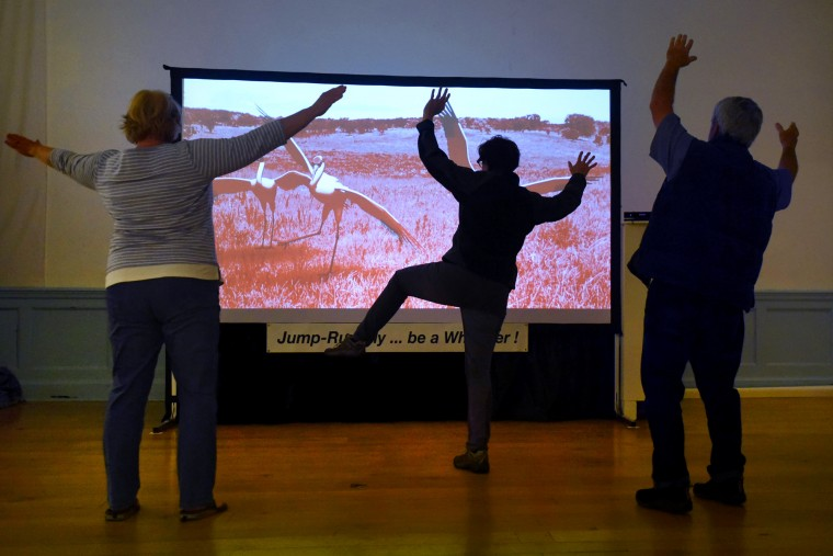 "Artist Cathy C. Cook, center, and Peale Center visitors MaryEllen and Carl Bowser of York, PA, interact with Cook's art installation, ""Mimicking Whooper,"" to appreciate the ways cranes communicate by gesture and vocalization. This virtual interaction, using gaming software, was made in collaboration with the Imaging Research Center at UMBC. In the exhibit, ""Birdland and the Anthropocene,""  Cook explains that cranes, an endangered species, are not as different from people as we might think. (Amy Davis/Baltimore Sun)"