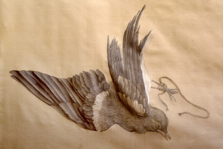 Jieyu Zhang's watercolor drawings, using mineral pigments on sizing silk, present dead birds as reminders of the struggle they face against extinction. Zhang writes that a demand for wild birds for consumption has resulted in massive capture, causing the extinction of several species. (Amy Davis/Baltimore Sun)