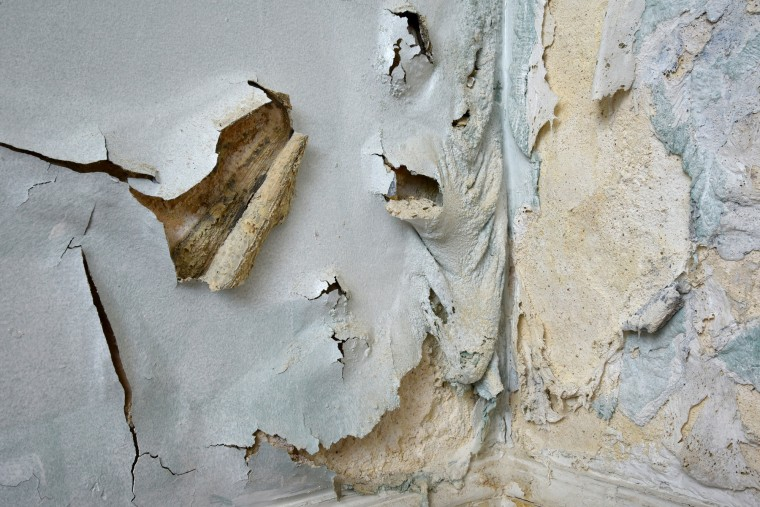 "The blistered, peeling walls in a third floor gallery are a reminder of the renovation work that remains to be done at the Peale Center. The decay in the 1814 building erected as a museum by Rembrandt Peale enhances the theme of extinction in ""Birdland and the Anthropocene.""  Art exhibits, live events, and other programs are being held at the Peale while the renovation, scheduled to be completed in 2020, is in progress. ((Amy Davis/Baltimore Sun)"