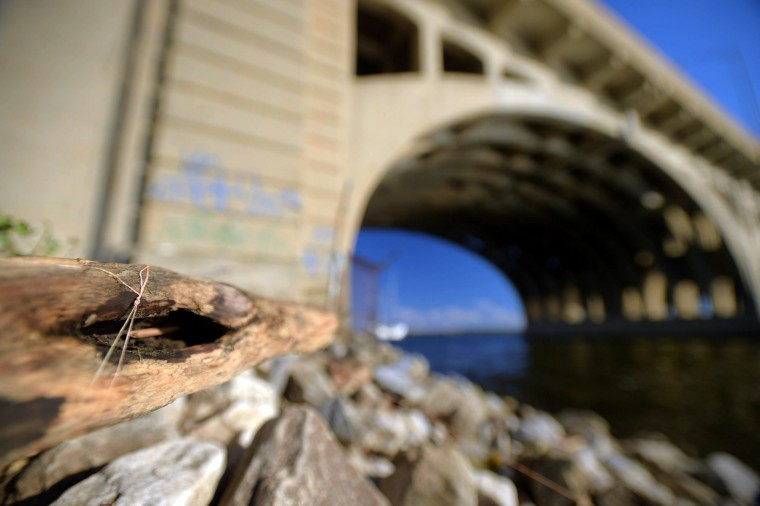 Driiftwood, caught by fishing line, rests atop rocks next to the abutment in a study of the Vietnam Veterans Memorial Bridge, known by many as the Hanover Street Bridge, which links Baltimore and Port Covington with Cherry Hill, Brooklyn and Curtis Bay. (Karl Merton Ferron / Baltimore Sun)